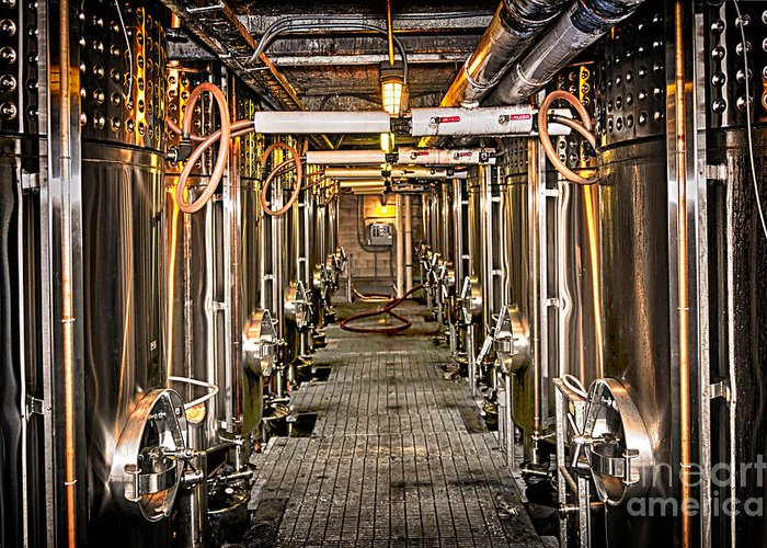 Wine Greeting Card featuring the photograph Inside Winery by Elena Elisseeva