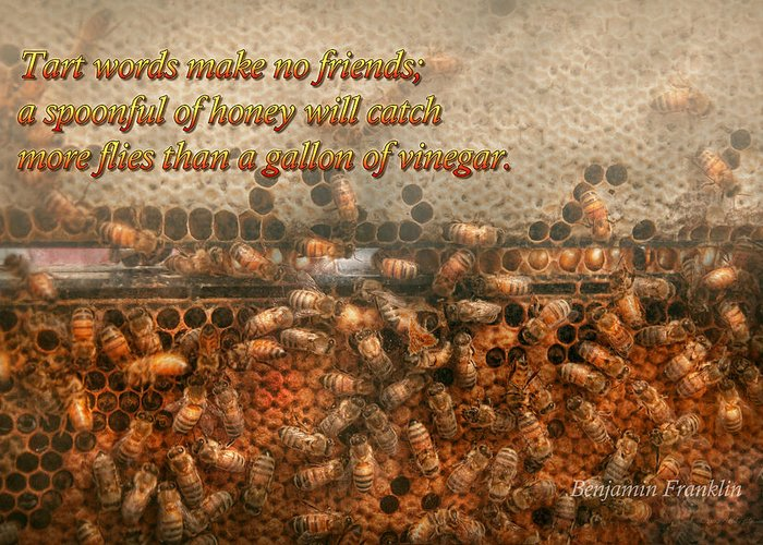 Honey Bee Greeting Card featuring the photograph Inspiration - Apiary - Bee's - Sweet Success - Ben Franklin by Mike Savad