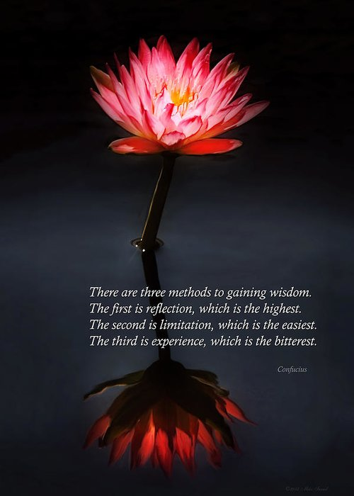 Confucius Greeting Card featuring the photograph Inspirational - Reflection - Confucius by Mike Savad