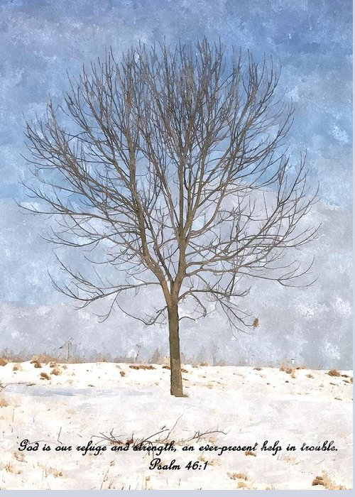 Tree Greeting Card featuring the photograph Inspirations 3 by Sara Raber