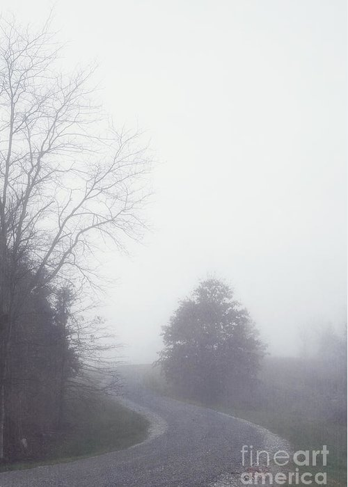 Fog Greeting Card featuring the photograph Into The Fog by Kay Pickens