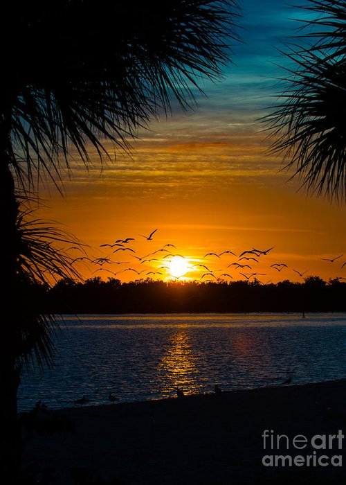 Port Charlotte Beach Greeting Card featuring the photograph Into The Sunset by Anne Kitzman