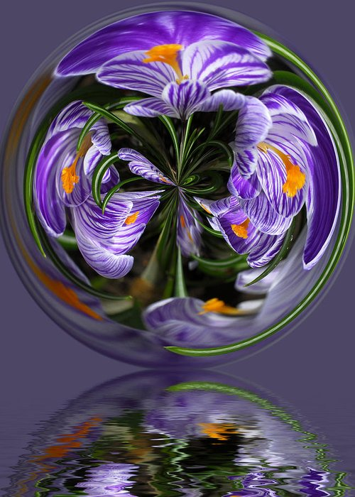 Abstract Greeting Card featuring the photograph Iris in the Bubble by Keith Gondron