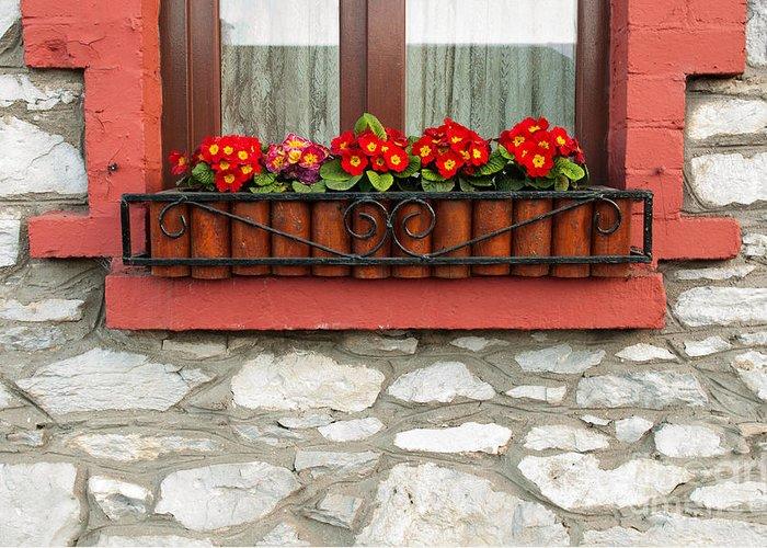 Primula Greeting Card featuring the photograph Irish Window by Luis Alvarenga