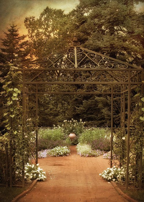 Nature Greeting Card featuring the photograph Iron Entrance by Jessica Jenney