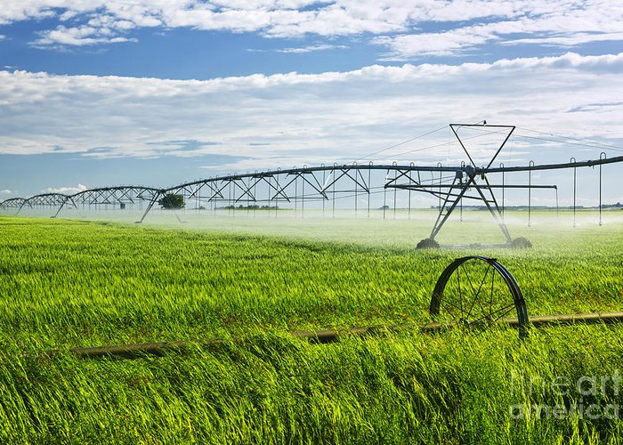 Irrigation Greeting Card featuring the photograph Irrigation On Saskatchewan Farm by Elena Elisseeva