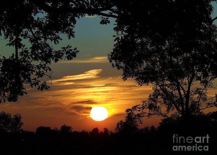 Spetacular Greeting Card featuring the photograph Is It Sun Up Or Sun Down by Scott B Bennett