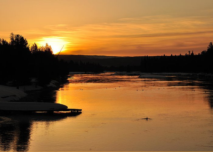 Sunrise Greeting Card featuring the photograph Island Park Sunrise by Brian Wartchow