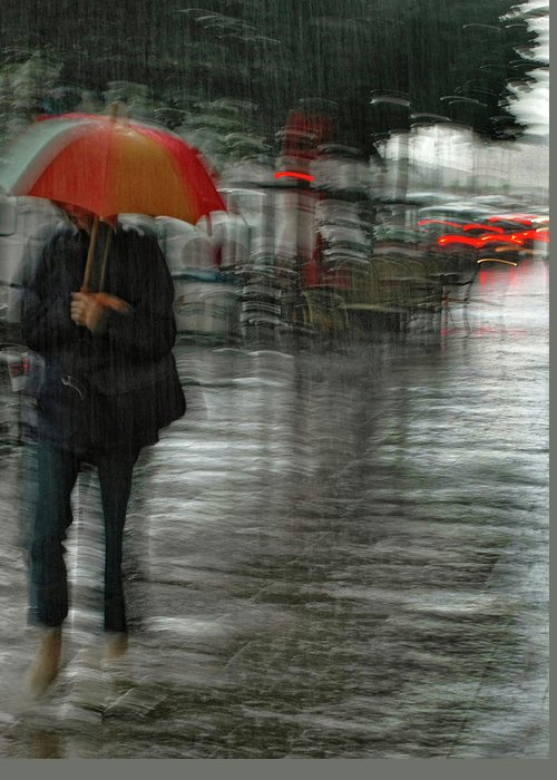 Street Greeting Card featuring the photograph It's Raining Cats And Dogs by Yvette Depaepe