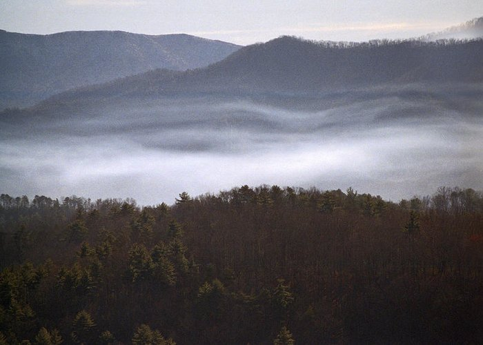 Tn Greeting Card featuring the photograph It's The Smokies Folks by Skip Willits