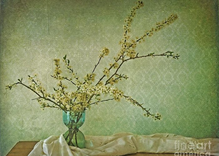 Blossoms Greeting Card featuring the photograph Ivory And Turquoise by Priska Wettstein