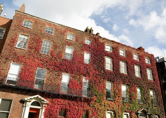 Dublin Greeting Card featuring the photograph Ivy Covered Georgian Style Building In by Lleerogers