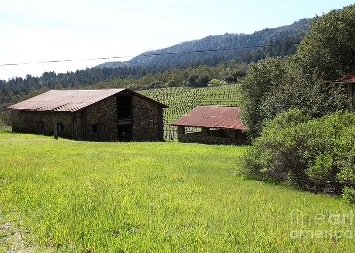 Sonoma Greeting Card featuring the photograph Jack London Stallion Barn 5d22058 by Wingsdomain Art and Photography