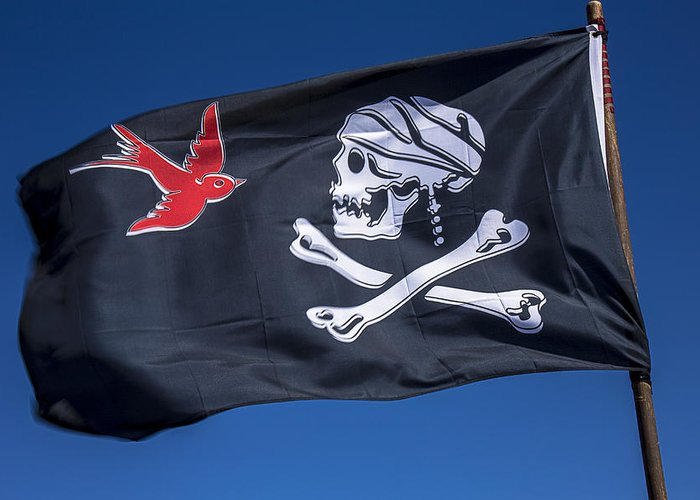 Jack Sparrow Greeting Card featuring the photograph Jack Sparrow Pirate Skull Flag by Garry Gay