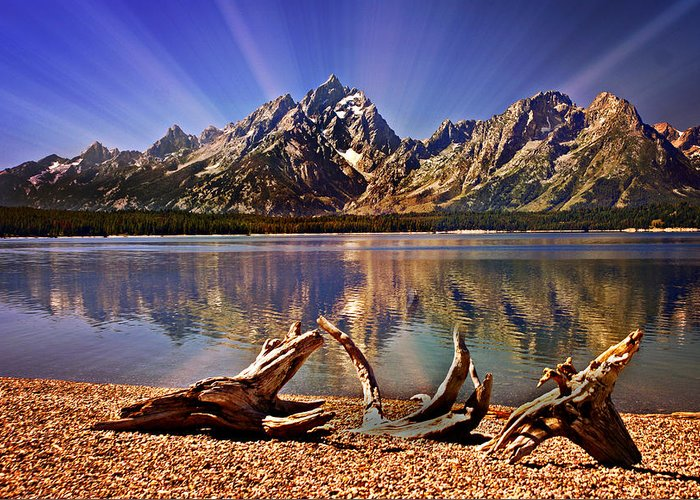 Grand Teton Greeting Card featuring the photograph Jackson Lake Mt. Moran by Marty Koch
