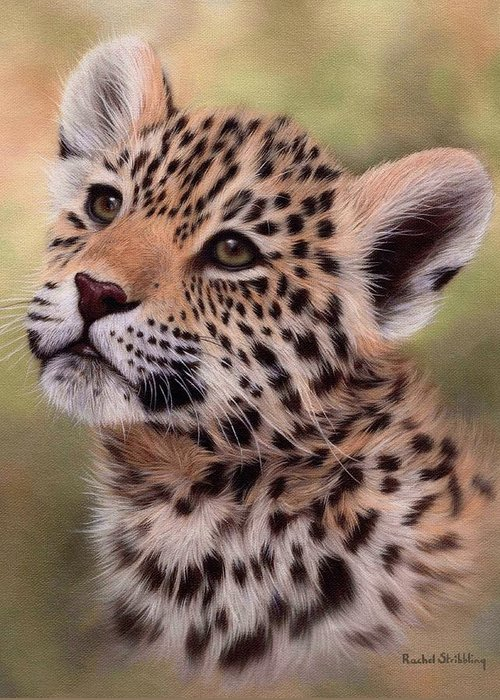 Jaguar Art Greeting Cards