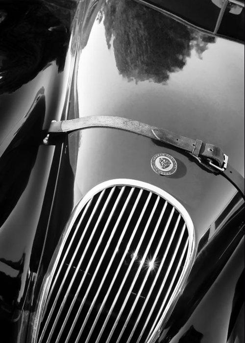 Jaguar Hood Emblem - Grille Greeting Card featuring the photograph Jaguar Hood Emblem - Grille by Jill Reger