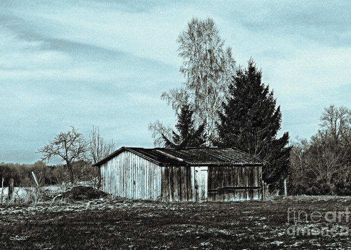 Photo Greeting Card featuring the photograph January Sadness by Jutta Maria Pusl