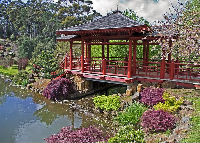 Gardens Greeting Card featuring the photograph Japanese Bridge At Emu Valley by Tony Crehan