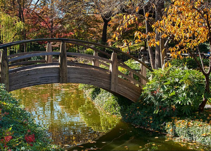 Garden Greeting Card featuring the photograph Japanese Garden In Fall by Iris Greenwell