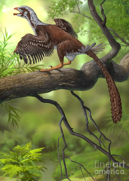 Zoology Greeting Card featuring the digital art Jeholornis Prima Perched On A Tree by Sergey Krasovskiy