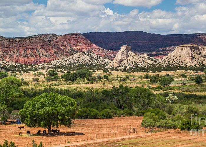 New Mexico Landscapes Greeting Card featuring the photograph Jemez River Valley 1 by Jim McCain
