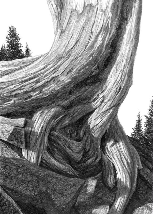 Mountain Greeting Card featuring the drawing July 12 by Doug Fluckiger