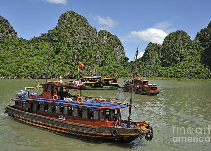 Halong Greeting Card featuring the photograph Junk Boats In Halong Bay by Sami Sarkis