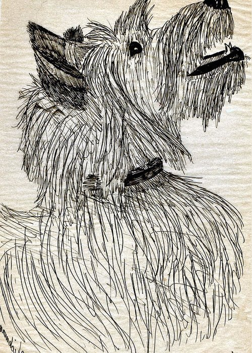 Animal Greeting Card featuring the drawing Just A Happy Fellow by Joy Reese