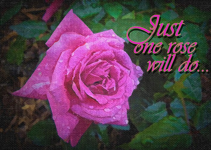 Roses Greeting Card featuring the photograph Just One Rose by Larry Bishop