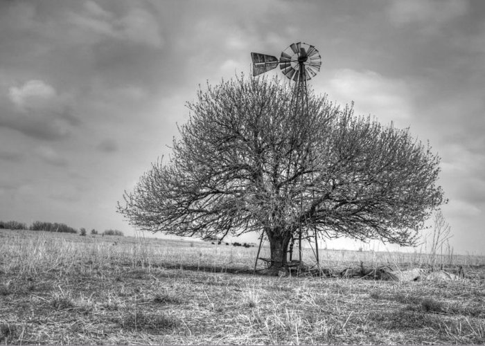 Kansas Greeting Card featuring the photograph Just Plain Kansas by JC Findley