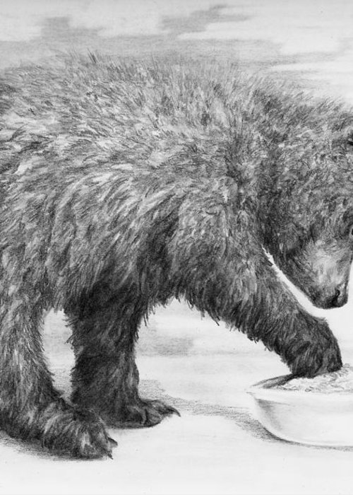 Bear Greeting Card featuring the drawing Just Right by Meagan Visser