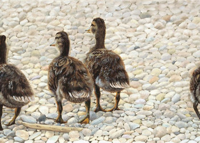 Ducklings Greeting Card featuring the painting Just Waddling by Tammy Taylor