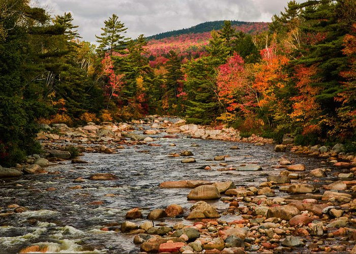 #jefffolger #vistaphotography Greeting Card featuring the photograph Kancamagus Prelude by Jeff Folger