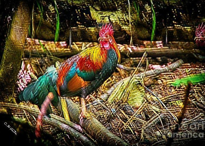 Charles Davis Greeting Card featuring the digital art Kauai Rooster by Charles Davis