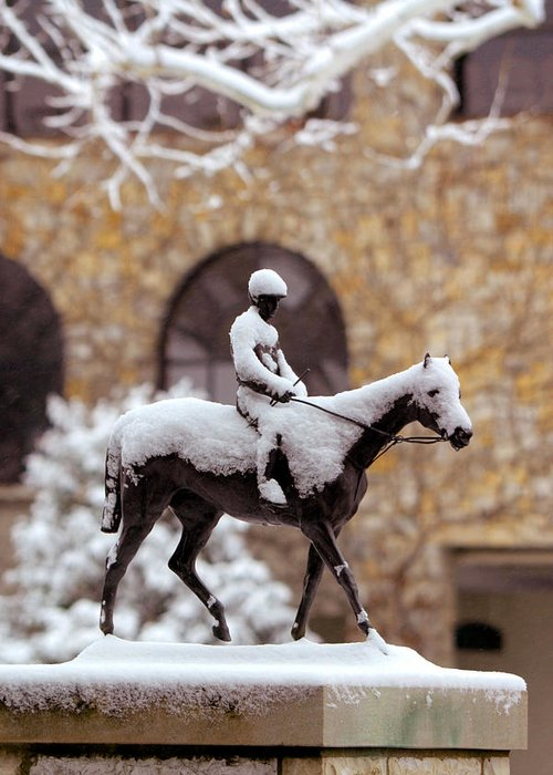 Horses Greeting Card featuring the photograph Keeneland In Winter by Sid Webb