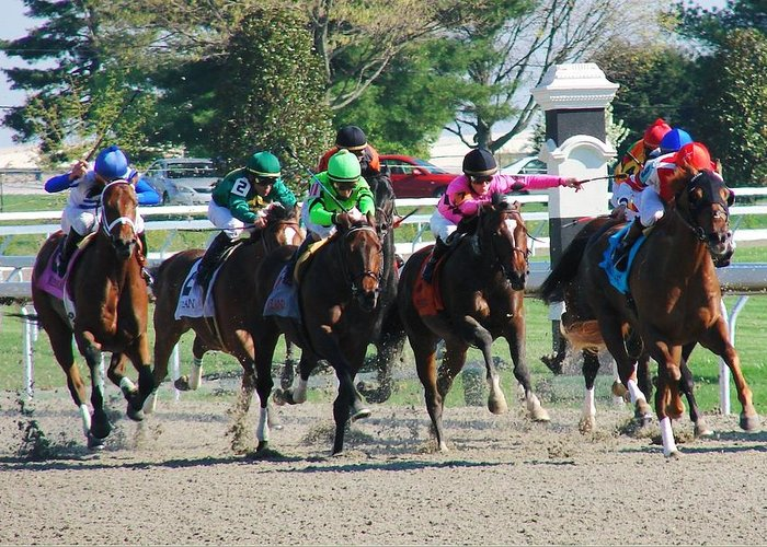 Race Greeting Card featuring the photograph Keeneland Run by Mia Capretta