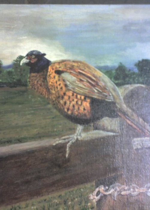 Cock Pheasant On Gate Greeting Card featuring the painting Keep Out by Stephen Thomson