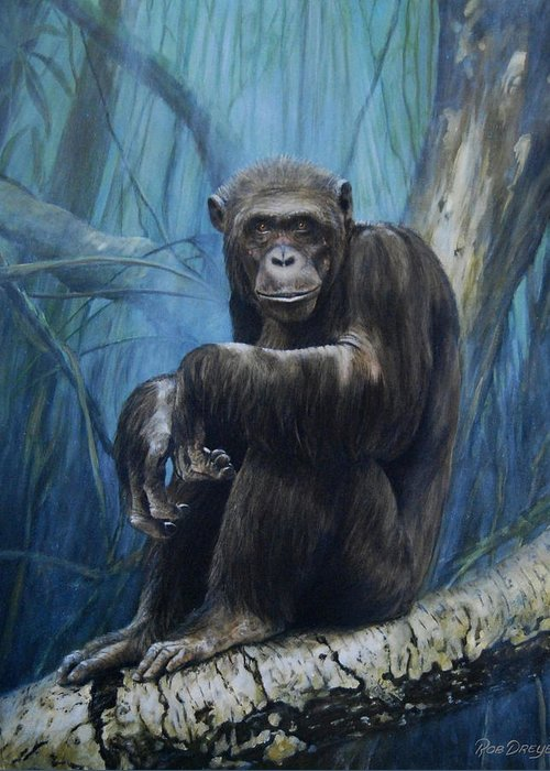 Chimp Greeting Card featuring the painting Keeper Of The Congo by Dreyer Wildlife Print Collections