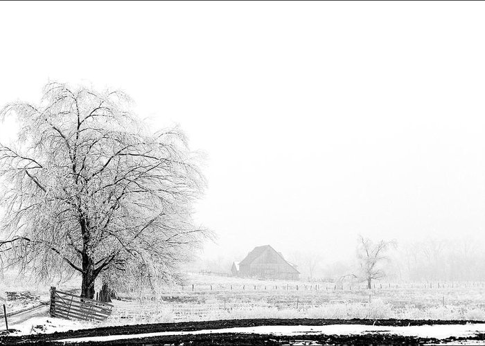 Kentucky Greeting Card featuring the photograph Kentucky Winter by Wendell Thompson