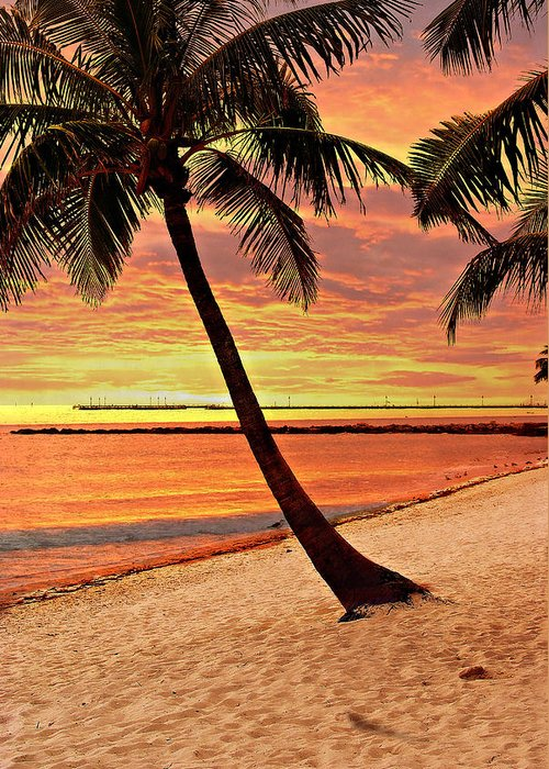Beach Greeting Card featuring the photograph Key West Beach by Marty Koch
