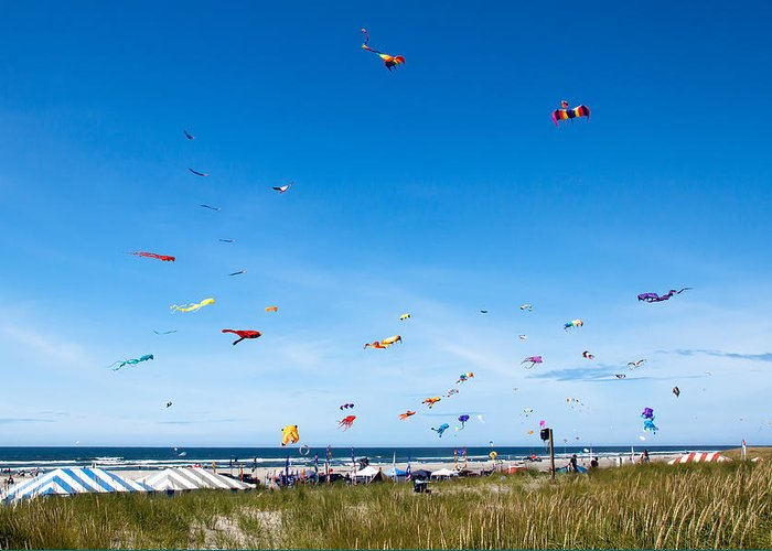 Kites Greeting Card featuring the photograph Kite Festial by Robert Bales