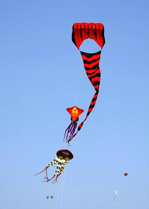 Kite Festival Greeting Cards