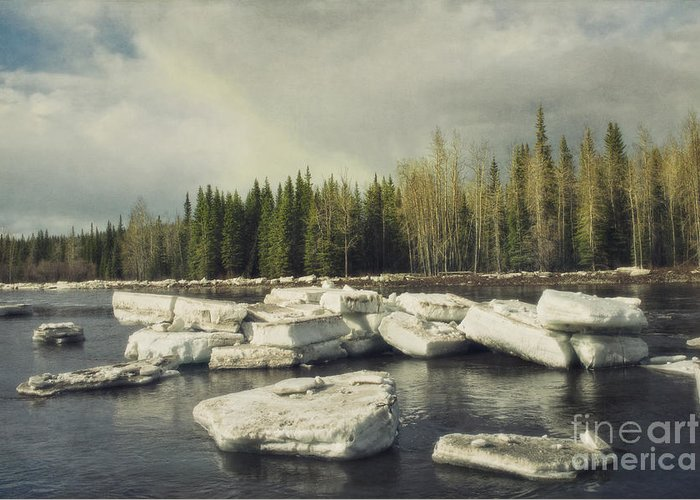 Klondike Greeting Card featuring the photograph Klondike River Ice Break by Priska Wettstein