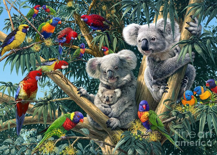 Koala Greeting Cards