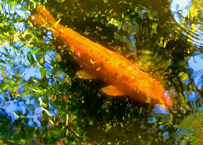 Animal Greeting Card featuring the painting Koi Fish 1 by Amy Vangsgard