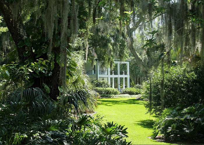 Plantation Greeting Card featuring the photograph Labelle Plantation by Jean Connor