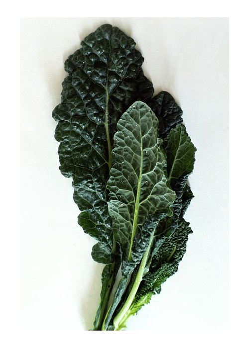 Food Greeting Card featuring the photograph Lacinato Kale by Romulo Yanes