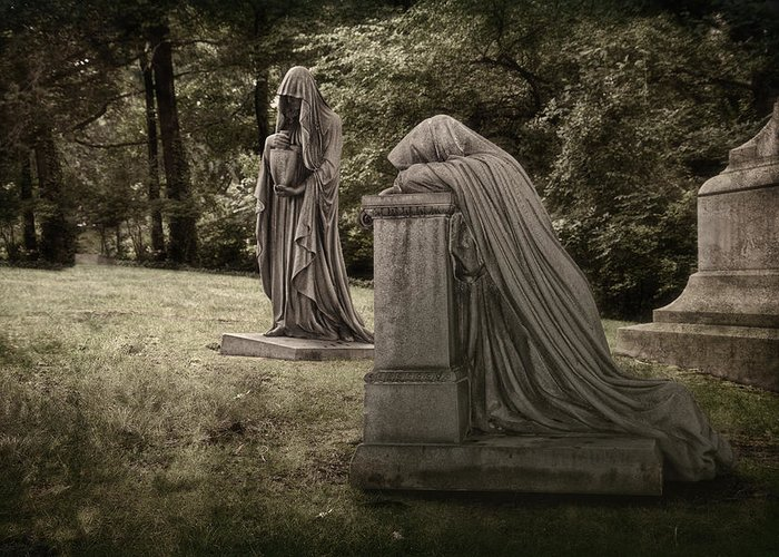 Lake View Greeting Card featuring the photograph Ladies Of Sorrow by Tom Mc Nemar