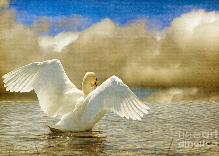 Swans Greeting Card featuring the photograph Lady-in-waiting by Lois Bryan